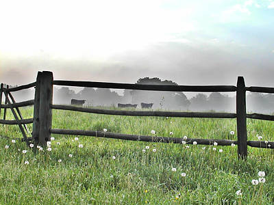 Rural Scenes Digital Art - Cows In Field by Bill Cannon