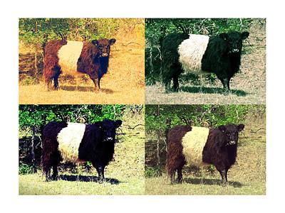 Cows Art Print by Joanne Elizabeth