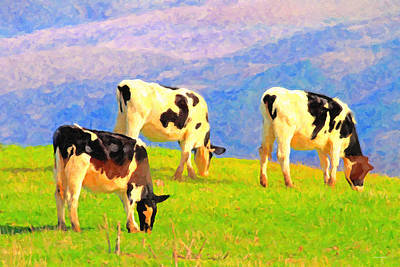Cows Photograph - Cows On A Hill . Photoart by Wingsdomain Art and Photography
