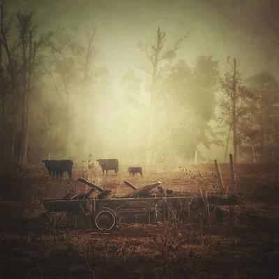 Photograph - Cows, Wagon, Fog by Melissa D Johnston