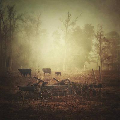 Photograph - Cows, Wagon, Fog by Melissa D Johnston