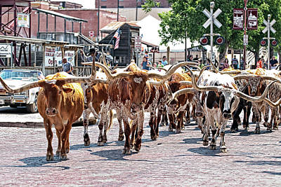 Photograph - Cowtown Stockyards by Renee Hong