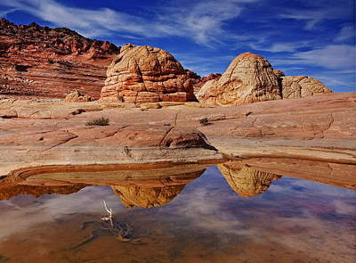 Coyote Butte Reflections Art Print by Mike  Dawson