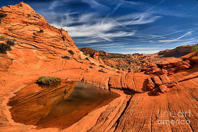Photograph - Coyote Buttes Wilderness Reflections by Adam Jewell