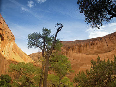 Photograph - Coyote Gulch Sunset by Kunal Mehra