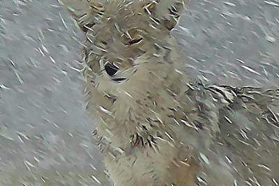 Coyote In Winter Print by Errol Savage