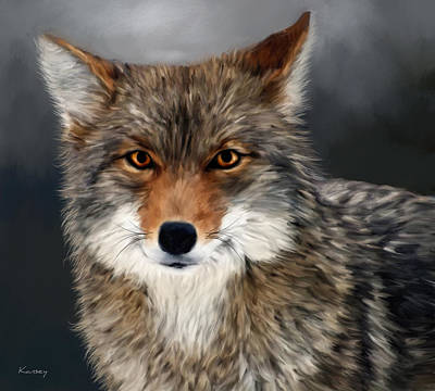 Painting - Coyote by Johanne Dauphinais