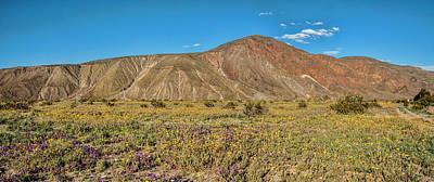 Digital Art - Coyote Mountain North Meadow by Daniel Hebard
