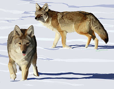 Wall Art - Digital Art - Coyote Pair by Pam Little