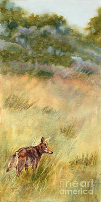 Coyote Santa Rosa Plateau Art Print by Bonnie Rinier