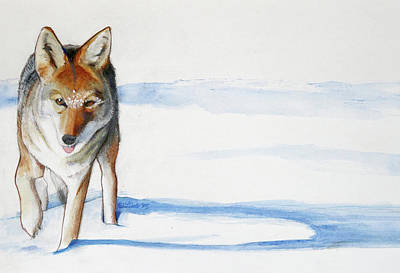 Wall Art - Painting - Coyote Trot by Pam Little