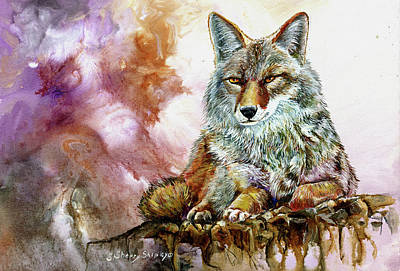 Painting - Coyotte by Sherry Shipley