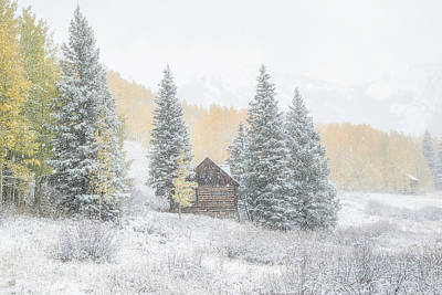 Photograph - Cozy Cabin by Kristal Kraft