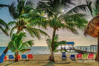 Photograph - Cozy Spot Ob The Beach by David Zanzinger