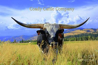 Longhorn Mixed Media - Cr Victory 1 by Annette Coady