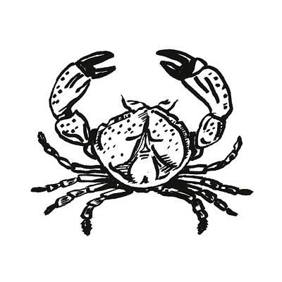 Drawing - Crab by Masha Batkova