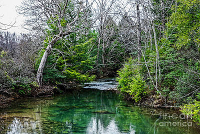 Photograph - Crab Orchard Creek by Paul Mashburn