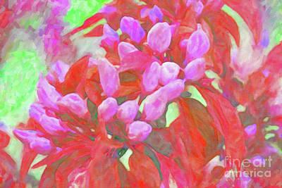 Digital Art - Crabapple Blossom Bright by Donna L Munro