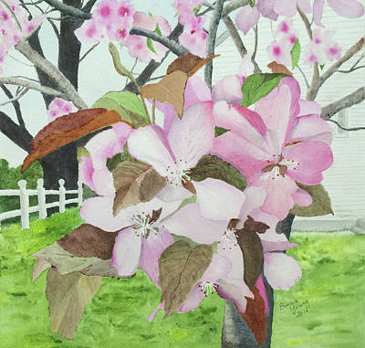 Crabapple Blossoms Original by Bonnie Young