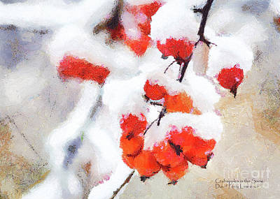 Photograph - Crabapples In The Snow by David Perry Lawrence