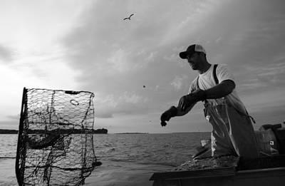 Photograph - Crabbing by La Dolce Vita