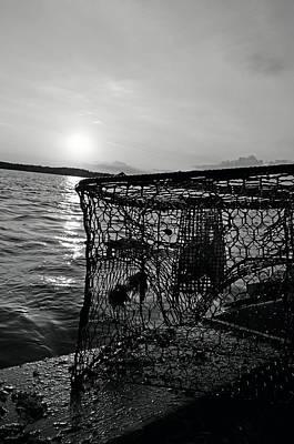 Photograph - Crabbing On The River by La Dolce Vita