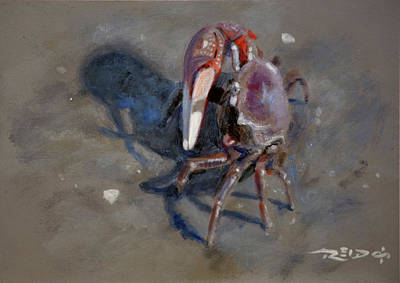 Claw Painting - Crabby by Christopher Reid