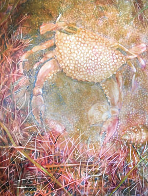 Painting - Crabby by Cora Marshall