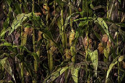 Photograph - Cracked Corn by Sherman Perry