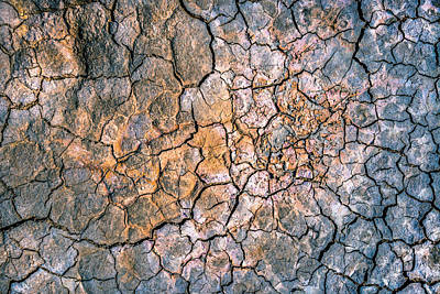 Photograph - Cracked Mud II by Alexander Kunz
