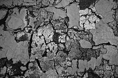 Nonrepresentational Photograph - Cracked Paint Abstract Bw by David Gordon
