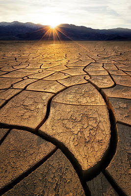 Photograph - Cracks by Nicki Frates