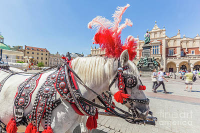 Pair Photograph - Cracow, Poland. Traditional Horse Carriage On The Main Old Town Market Square. by Michal Bednarek