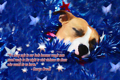 Print featuring the photograph Cradled By A Blanket Of Stars And Stripes - Quote by Shelley Neff