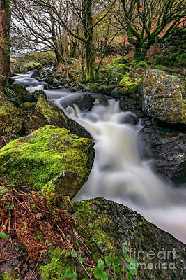Photograph - Crafnant River Rapids by Adrian Evans