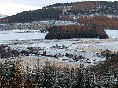 Photograph - Cragganmore From Dalnapot Wood by Phil Banks