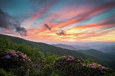 Photograph - Craggy Blooms in the Blue Ridge Mountains of North Carolina by L A Patterson