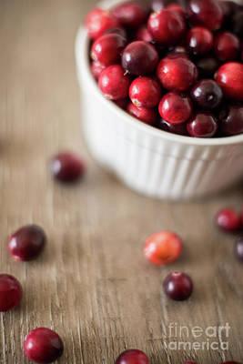 Cranberries Print by Taylor Martinsen