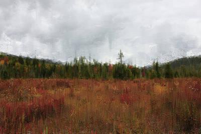 Watercolor Pet Portraits Digital Art - Cranberry Bogs by Kim Curinga