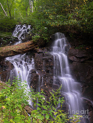 Photograph - Cranberry Falls. by Itai Minovitz