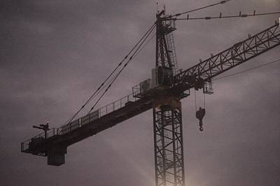 Photograph - Crane by Buddy Scott