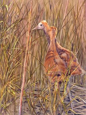 Painting - Crane Colts by Vicky Lilla