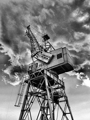 Crane Original by Sorin Ghencea