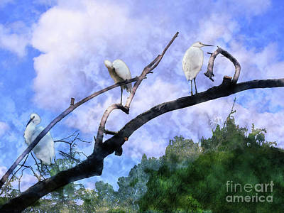 Painting - Cranes In A Tree by Methune Hively