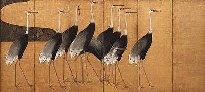 Painting - Cranes by Ogata Korin