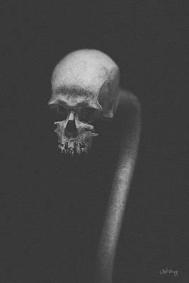 Photograph - Cranium Ophidian Ashen by Joseph Westrupp