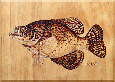 Pyrography - Crappie by Ron Haist
