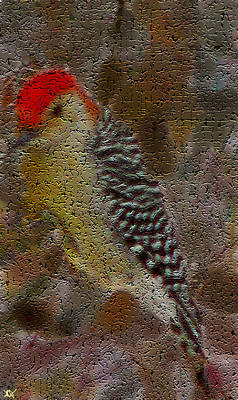 Woodpecker Mixed Media - Craquelure Woodpecker by Debra     Vatalaro
