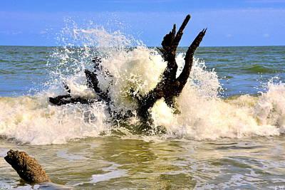 Photograph - Crash by Lisa Wooten
