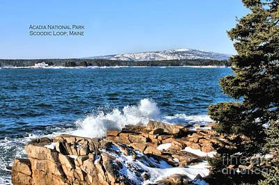 Photograph - Crashing Acadia Waves 2 by Debbie Stahre